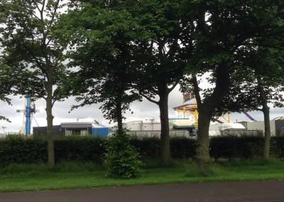 Gosforth Town Moor Fair