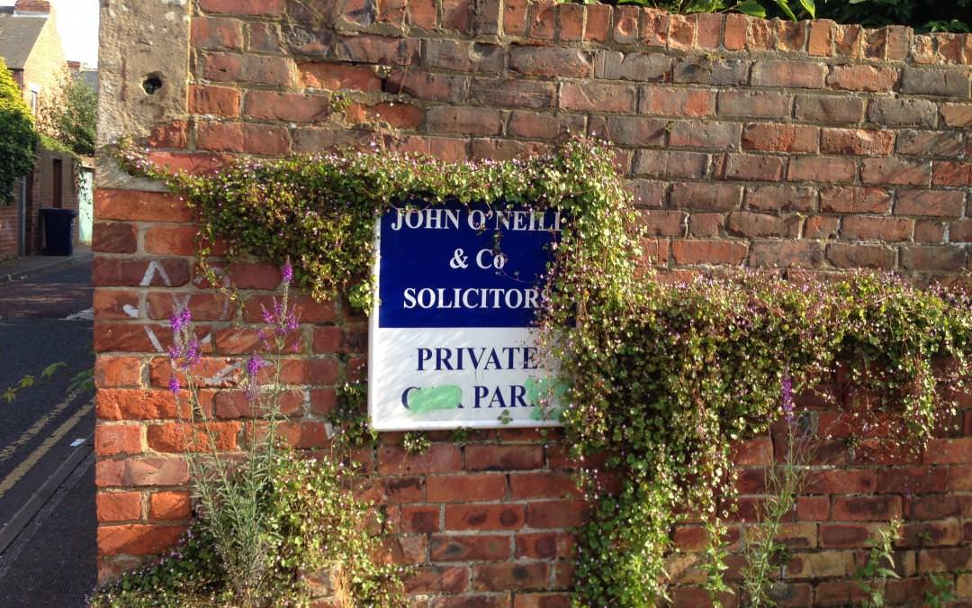Back lane of John O'Neil & Co Solicitors
